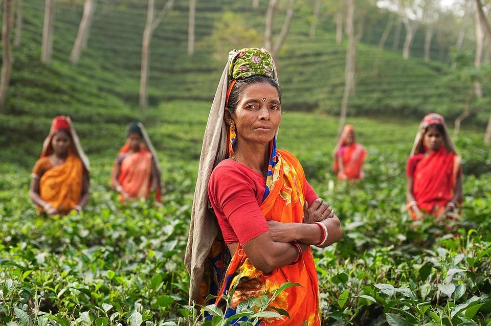 India: modifica della Legge sulle imprese